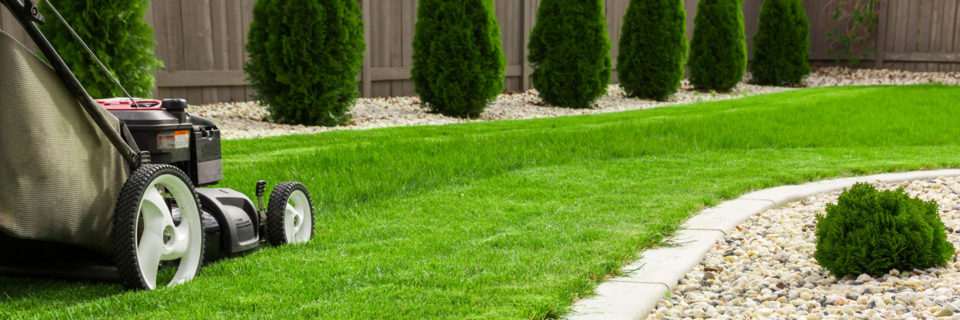 Landscape Maintenance A great look and feel to any property