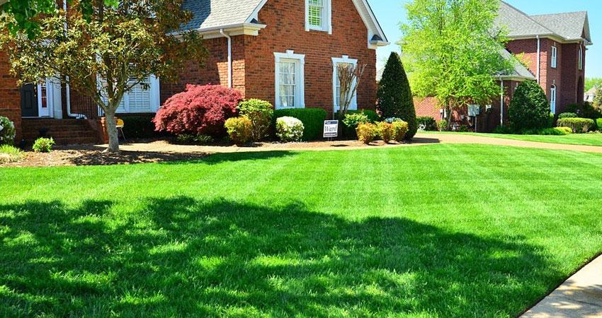 Garden Help - Lawn Mowing